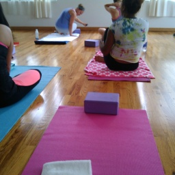 Chapter 3: Yoga, in the name of Social Change.